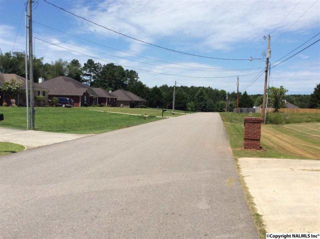 127 Willowvalley Drive, Harvest, AL 35749 (MLS #1072464) :: Amanda Howard Real Estate™