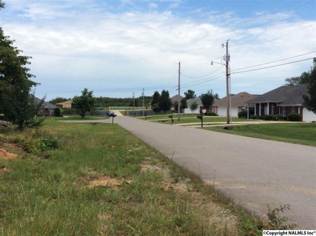110 Rainoak Drive, Madison, AL 35749 (MLS #1072539) :: Amanda Howard Real Estate™