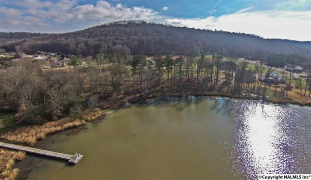 Lot 1 Lake Creek Drive, Guntersville, AL 35976 (MLS #1072826) :: RE/MAX Alliance