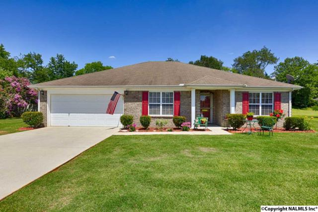 211 Guardian Drive, Harvest, AL 35749 (MLS #1073262) :: Amanda Howard Real Estate™