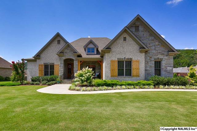 61 Mcmullen Lane, Gurley, AL 35748 (MLS #1073566) :: Amanda Howard Real Estate