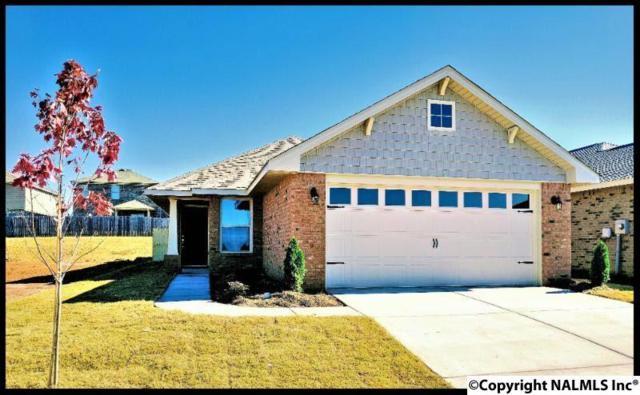 16982 Wellhouse Drive, Harvest, AL 35749 (MLS #1073687) :: Amanda Howard Real Estate™