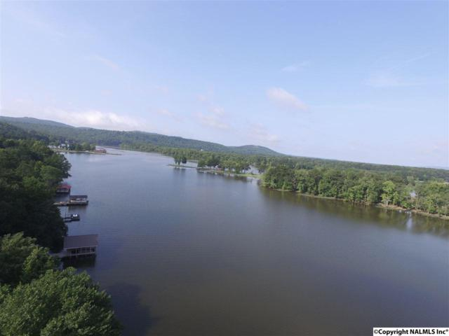 Riverview Drive, Glencoe, AL 35905 (MLS #1074076) :: Amanda Howard Sotheby's International Realty