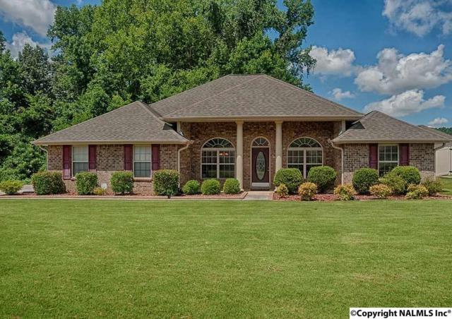 102 Slack Water Court, Huntsville, AL 35824 (MLS #1074122) :: Amanda Howard Real Estate™