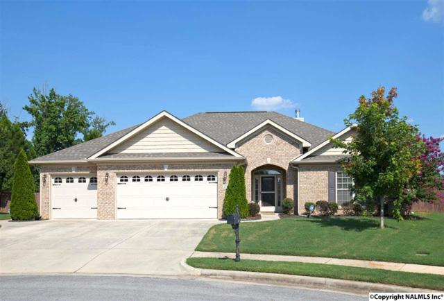 212 North Mossy Creek Circle, Madison, AL 35757 (MLS #1074321) :: Amanda Howard Real Estate