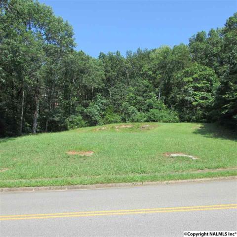 1735 Drake Avenue, Huntsville, AL 35801 (MLS #1074344) :: Capstone Realty