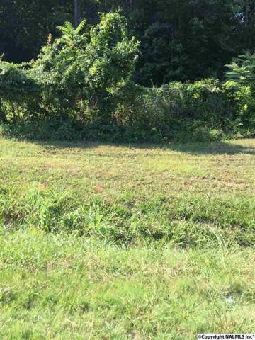 00 Alabama Hwy 79, Guntersville, AL 35976 (MLS #1074382) :: Amanda Howard Real Estate™