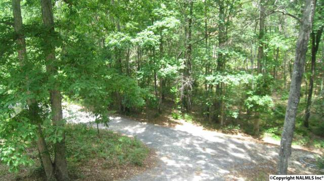 0001 County Road 148, Fort Payne, AL 35967 (MLS #1074889) :: Intero Real Estate Services Huntsville