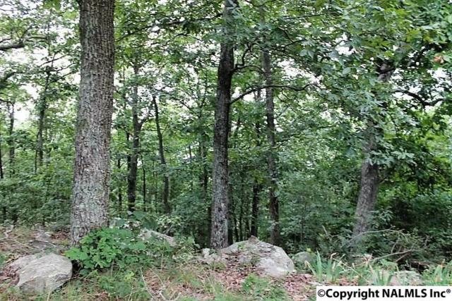 00 County Road 166, Fort Payne, AL 35967 (MLS #1074900) :: RE/MAX Alliance