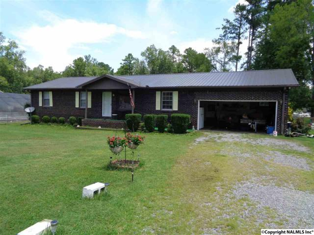 509 Diversey Street, Rainbow City, AL 35906 (MLS #1075260) :: Amanda Howard Real Estate™
