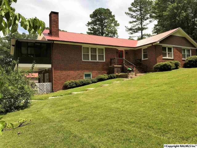 1770 Dug Hill Road, Brownsboro, AL 35741 (MLS #1075338) :: RE/MAX Distinctive | Lowrey Team