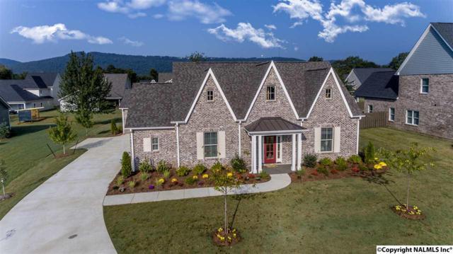 2840 Natures Cove Drive, Owens Cross Roads, AL 35763 (MLS #1075422) :: Amanda Howard Real Estate™