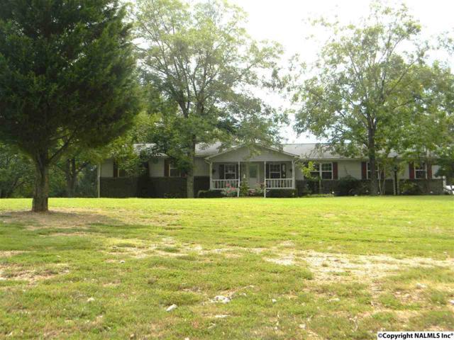 5380 Mountain Pass Road, Southside, AL 35907 (MLS #1075551) :: Amanda Howard Real Estate™