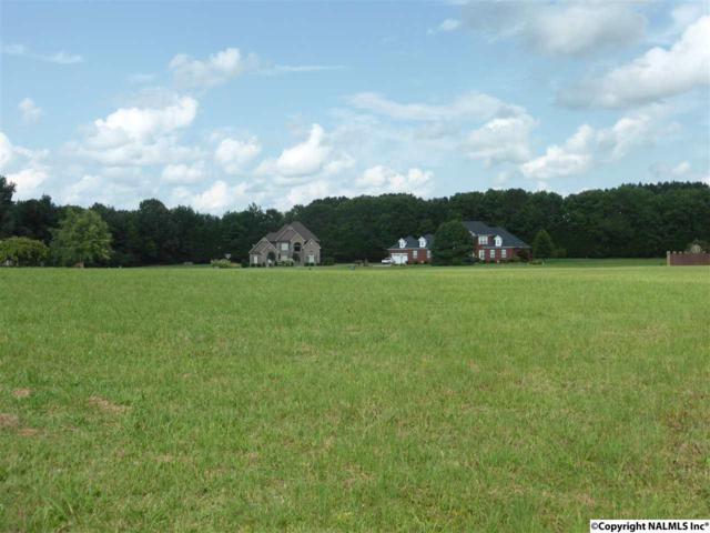 Meadow Way, Athens, AL 35611 (MLS #1076050) :: Amanda Howard Real Estate™