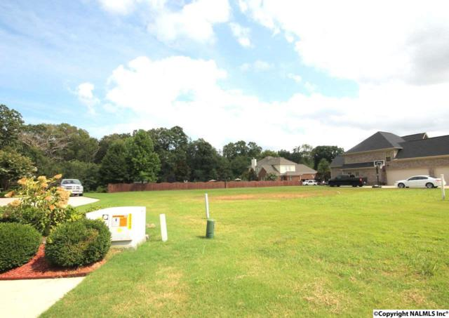 202 Hawks Crest Drive, Madison, AL 35757 (MLS #1076225) :: RE/MAX Distinctive | Lowrey Team