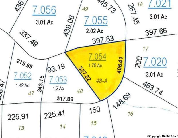River Road, Mentone, AL 35984 (MLS #1076286) :: Amanda Howard Real Estate™