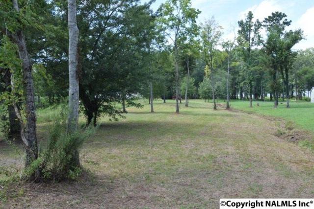 124 Star Point Road, Guntersville, AL 35976 (MLS #1076428) :: RE/MAX Distinctive | Lowrey Team