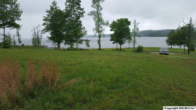 0 Alabama Highway 227, Guntersville, AL 35976 (MLS #1076584) :: Amanda Howard Real Estate