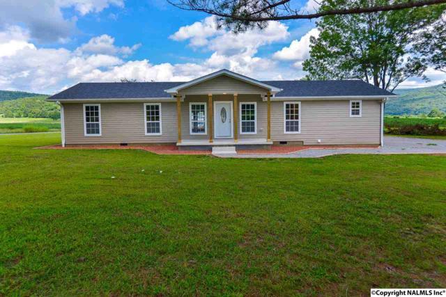 1495 Hurricane Road, New Market, AL 35761 (MLS #1076591) :: Amanda Howard Real Estate