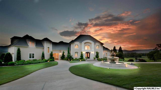 190 Brooks Circle, Brownsboro, AL 35741 (MLS #1076624) :: Intero Real Estate Services Huntsville