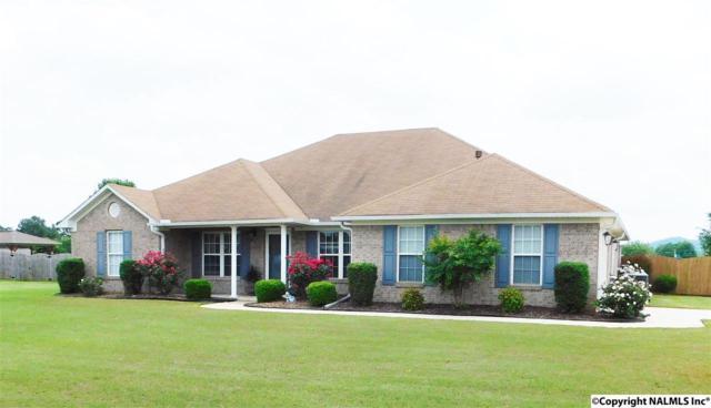 215 Waypoint Circle, Harvest, AL 35749 (MLS #1076636) :: Intero Real Estate Services Huntsville