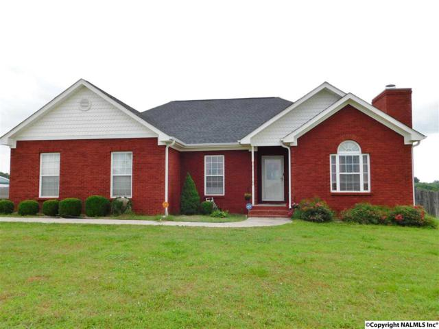 171 Water Tank Road, Toney, AL 35773 (MLS #1076639) :: Intero Real Estate Services Huntsville