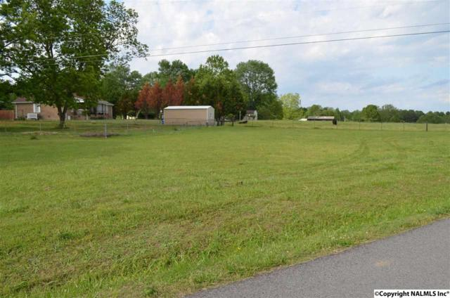 Newport Road, Arab, AL 35016 (MLS #1076674) :: Intero Real Estate Services Huntsville