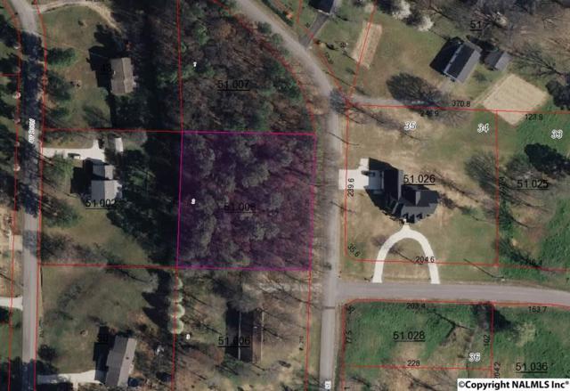 Smalley Drive, Arab, AL 35016 (MLS #1077385) :: Amanda Howard Real Estate™