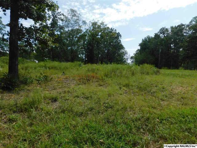 Lot 34 County Road 638, Cedar Bluff, AL 35959 (MLS #1077643) :: Amanda Howard Real Estate™