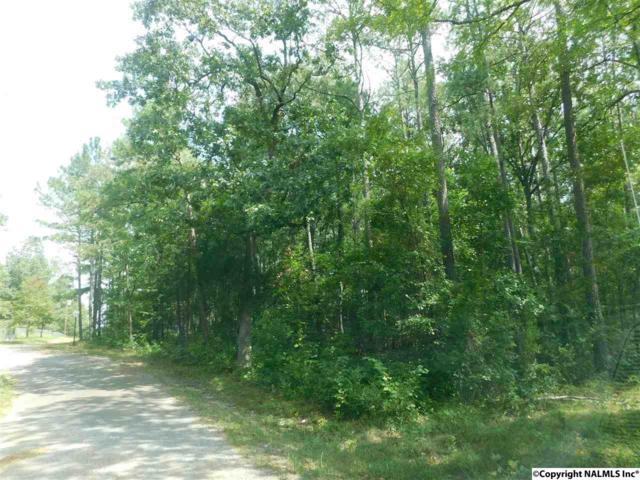Lot 81 County Road 608, Cedar Bluff, AL 35959 (MLS #1077690) :: Amanda Howard Real Estate™