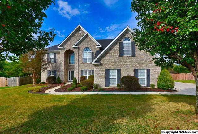 105 Oak Springs Circle, New Market, AL 35761 (MLS #1077883) :: Capstone Realty