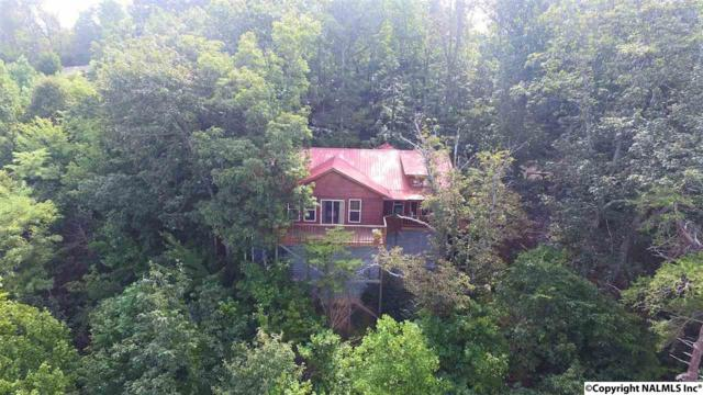 1577 County Road 224, Dutton, AL 35744 (MLS #1077960) :: Amanda Howard Real Estate™