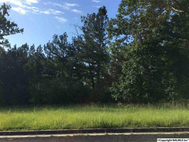 1665 Lake Cove Drive, Decatur, AL 35603 (MLS #1077990) :: Amanda Howard Real Estate™