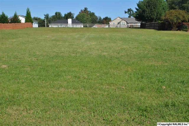 119 River Downs Drive, Huntsville, AL 35811 (MLS #1078100) :: Amanda Howard Real Estate™