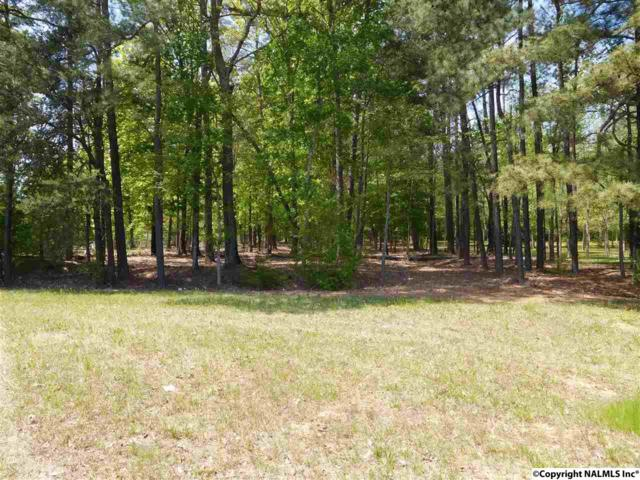 32 Alabama Highway 9, Centre, AL 35960 (MLS #1078258) :: Amanda Howard Sotheby's International Realty