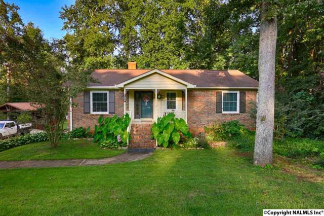 119 Michael Drive, Huntsville, AL 35811 (MLS #1078372) :: Capstone Realty