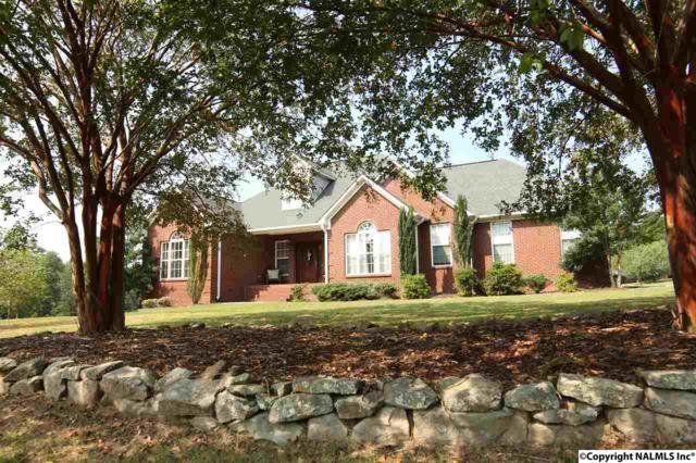 16 Kid Creek Drive, Union Grove, AL 35175 (MLS #1078485) :: Amanda Howard Real Estate™