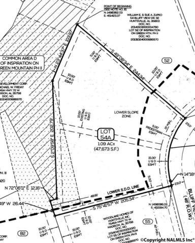 58 Bluff View Drive, Huntsville, AL 35803 (MLS #1078541) :: RE/MAX Alliance