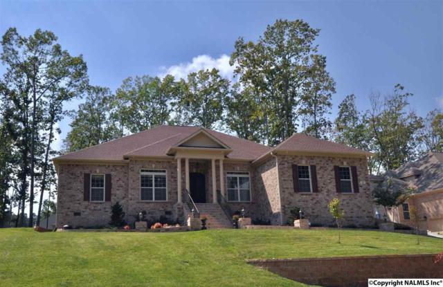 31 Verdant Circle, Huntsville, AL 35803 (MLS #1078658) :: Capstone Realty