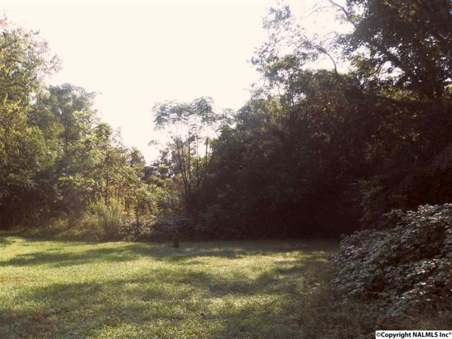 0 Cedar Lake Road, Decatur, AL 35603 (MLS #1078760) :: Capstone Realty