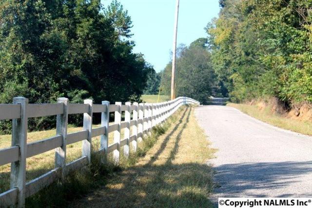 Maples Road, Lester, AL 35647 (MLS #1078805) :: Capstone Realty