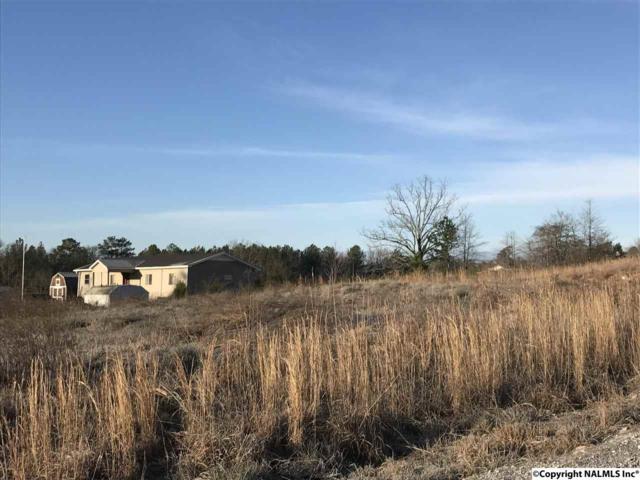 Lt# 3 Hilltop Drive, Hokes Bluff, AL 35903 (MLS #1078865) :: RE/MAX Alliance