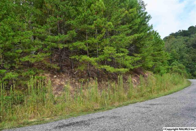 000 Sipsey Pike Road, Double Springs, AL 35553 (MLS #1078867) :: RE/MAX Alliance
