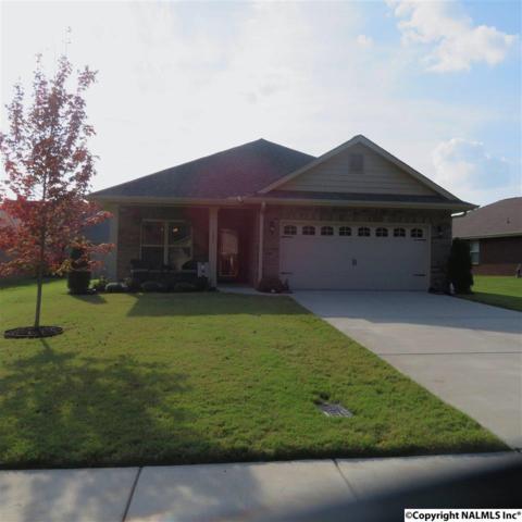 132 Willow Tree Drive, Meridianville, AL 35759 (MLS #1078911) :: Amanda Howard Real Estate™
