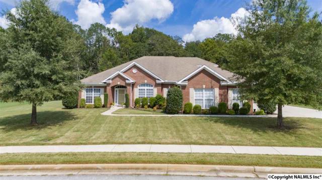 103 Sage Willow Drive, Madison, AL 35756 (MLS #1078946) :: Amanda Howard Real Estate™
