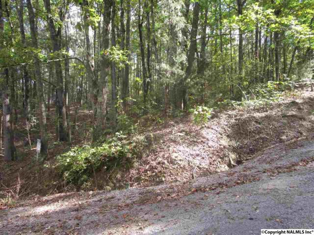 00 Turner Mountain Road, Hokes Bluff, AL 35903 (MLS #1079484) :: Intero Real Estate Services Huntsville