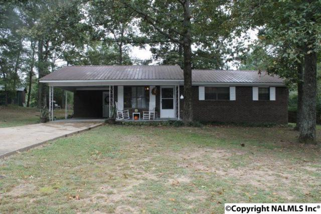 223 County Road 1004, Geraldine, AL 35974 (MLS #1079621) :: RE/MAX Alliance