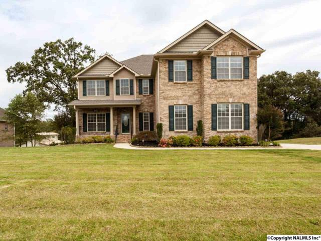 246 Brevard Boulevard, Huntsville, AL 35811 (MLS #1079665) :: Amanda Howard Real Estate™