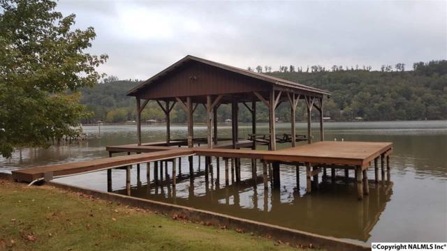 15 River Run Road, Cedar Bluff, AL 35959 (MLS #1079755) :: Amanda Howard Real Estate™