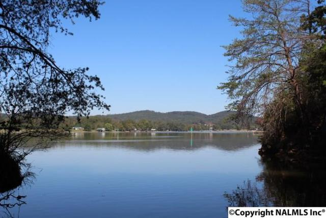 County Road 251, Cedar Bluff, AL 35959 (MLS #1079792) :: RE/MAX Distinctive | Lowrey Team